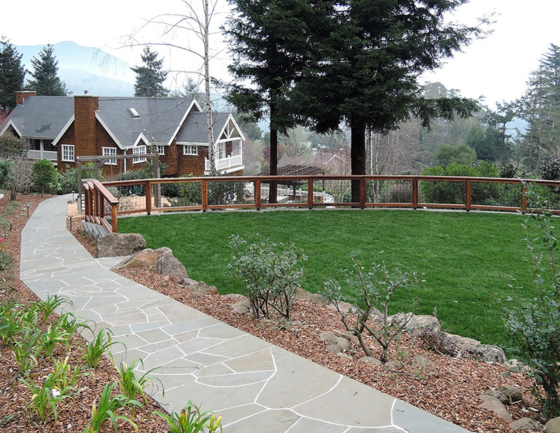 Mill valley hillside creative environments landscape for Garden design mill valley