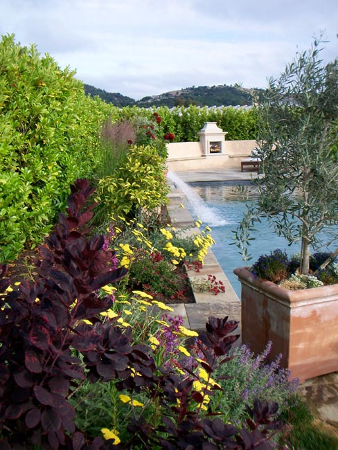 Pool, hardscape patio, water feature and fire place with landscape planting